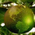 La bioeconomía, una oportunidad para aportar valor y diferenciación