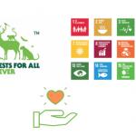 FSC y ODS, objetivos por la sostenibilidad