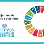 Manual básico de los ODS